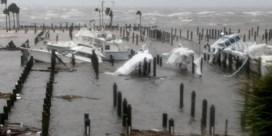 'Bomen knakken alsof het tandenstokers zijn': zo zwaar sloeg orkaan Michael toe