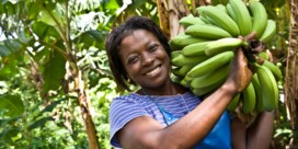 Fairtrade: een beter leven dankzij eerlijke handel