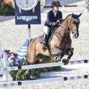 Bill Gates koopt paardenhoeve in Kempen voor dochter