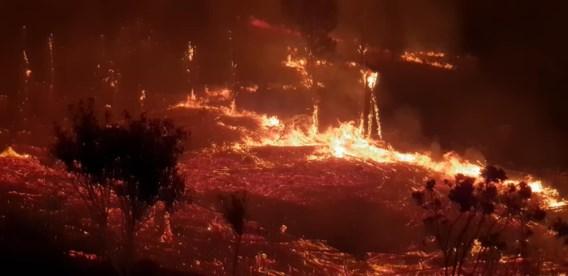 Zeven doden bij natuurbranden langs Zuid-Afrikaanse Tuinroute
