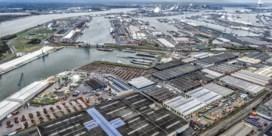 'Antwerpen is een van de meest vervuilde regio's van Europa'