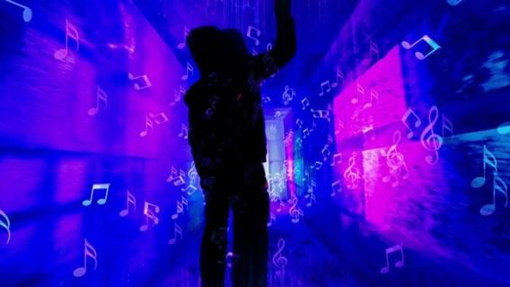 Brugs ijssculpturenfestival wordt nog feeërieker