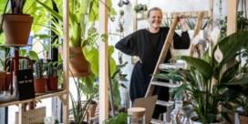 'Dit wordt een toeristische trekpleister in Borgerhout'