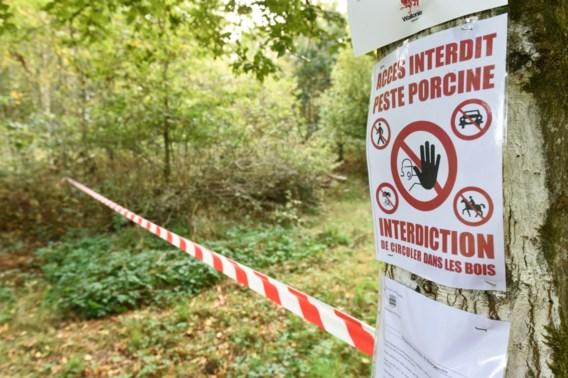 Frankrijk gaat afsluiting plaatsen op grens met België