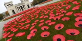 Poppies en politici klaar voor herdenkingen 'Grote Oorlog'