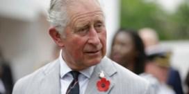 Prins Charles vertelt hoe hij zijn rol als koning ziet