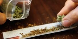 Medicinale cannabis goedgekeurd door Thaise ministerraad