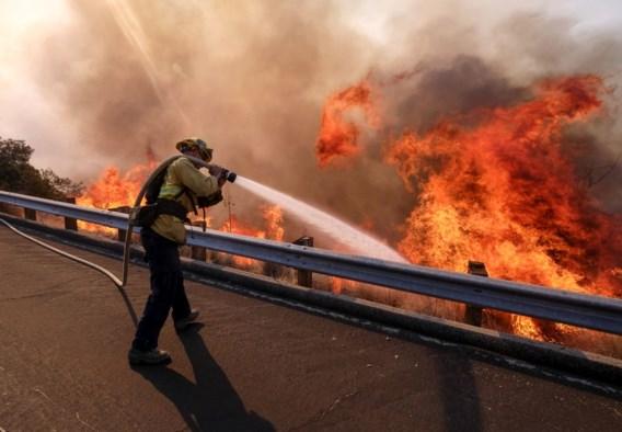 Al 44 doden bij bosbranden, hoogste dodentol uit geschiedenis Californië