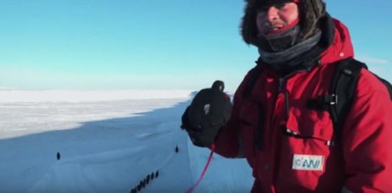 Mochten filmmakers deze pinguïns redden? 'Het was hartverscheurend'