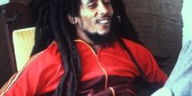 Reggae is voortaan cultureel erfgoed