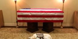 Hond van overleden Bush houdt laatste keer de wacht