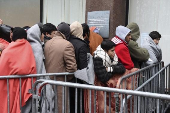 Ngo's naar Raad van State tegen limiet van 50 asielaanvragen per dag: 'Extreme willekeur'