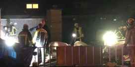 Honderd varkens komen om bij ongeluk in Brasschaat