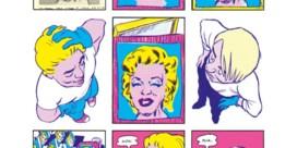 De puzzel van Warhol