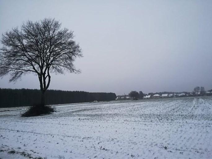 Winterse taferelen in Limburg en de Ardennen