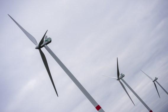 Schauvliege gunt omgevingsvergunning voor elf windmolens in Zeebrugge