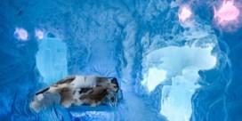 Zweeds ijshotel opent met nieuwe designs