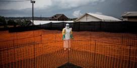 Het jaar van Artsen zonder Grenzen in foto's