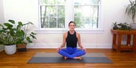 De Jeroen Meus van de yoga