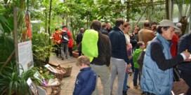 Plantentuin begint na recordjaar aan reeks investeringen