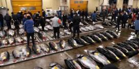 Beroemde vismarkt in Tokio wordt omgebouwd tot zakencentrum