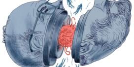★★★★★<br>Umberto Eco.  Op de schouders van reuzen.