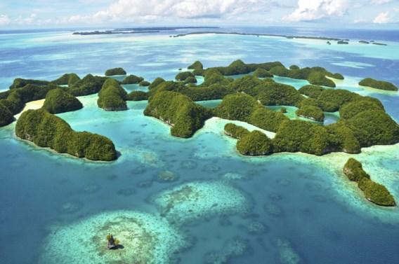 Blauwere oceanen door hogere temperaturen (maar ook groenere)