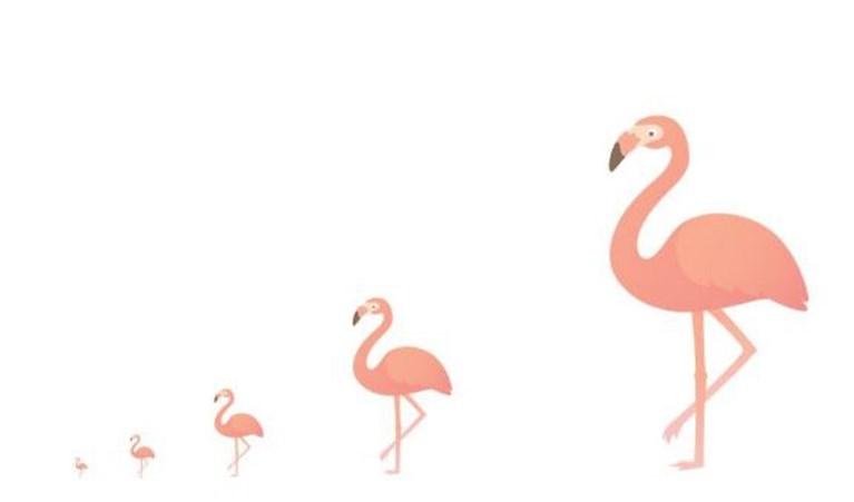 Nieuwe emoji's op komst: meer diversiteit, flamingo en falafel