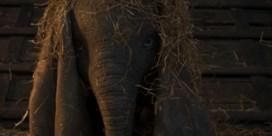 Disney heeft de nieuwe trailer van 'Dumbo' klaar