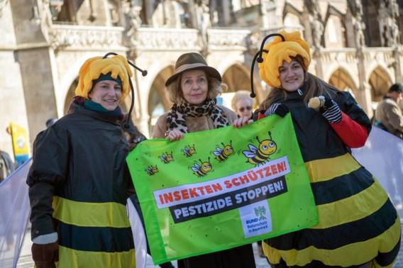 'Red de Beierse bijen!'
