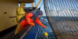 Voorlopig geen verbod op pulsvisserij