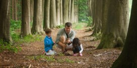 Natuurgebied Ganzeveld krijgt bijkomende hectare bos