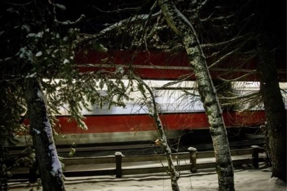 Belg van 27 komt onder trein terecht en sterft in Tirol