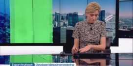 Ruben Van Gucht moet Annelies Van Herck uit de nood helpen tijdens middagjournaal