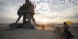 Burning Man is luxebeesten beu