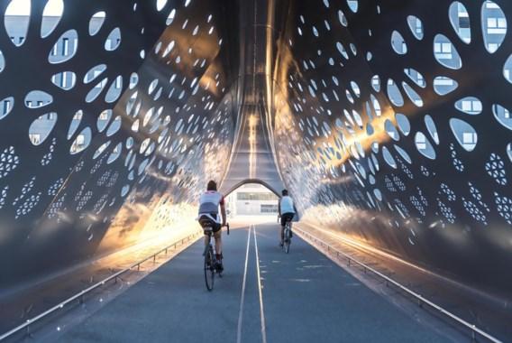 Voortaan verplichte kunst aan nieuwe bruggen of in nieuwe scholen