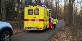 Everzwijn dat in Bokrijk een fietser verwondde, was aangeschoten