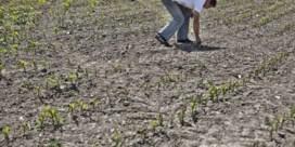 Boeren krijgen hulp uit de ruimte