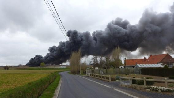 Meer dan 2.000 varkens omgekomen bij zware brand