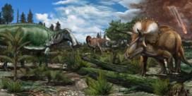 Dino's floreerden tot de laatste dag