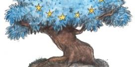 'Europese Unie creëert geen groei'
