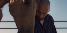Rolling Stone tipt nieuwe film van Matthias Schoenaerts als Oscarkandidaat