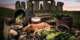Stonehenge was het Tomorrowland van gisteren
