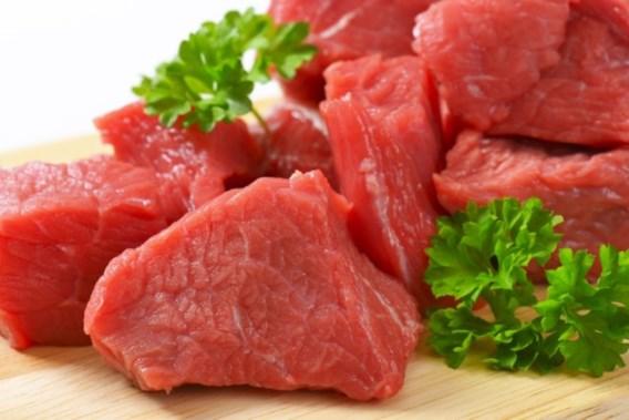 Schepencollege verplicht vlees op vegetarische picknick