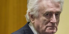 Oorlogsmisdadiger Karadzic krijgt levenslang