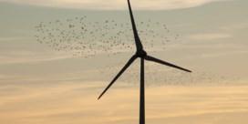 Vlaamse steun voor veertien nieuwe windmolens