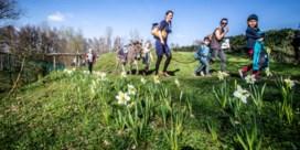 Plannen voor wildplukpaden in acht Limburgse gemeenten