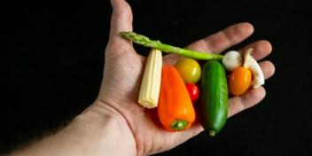 Stuur ons hier uw vragen over voeding