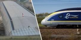 Treinverkeer Eurostar stilgelegd door 'Brexitbetoger op dak van station'