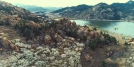 China bedekt met prachtige bloemenzeeën